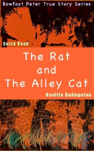 The Rat And The Alley Cat by Neville DeAngelou